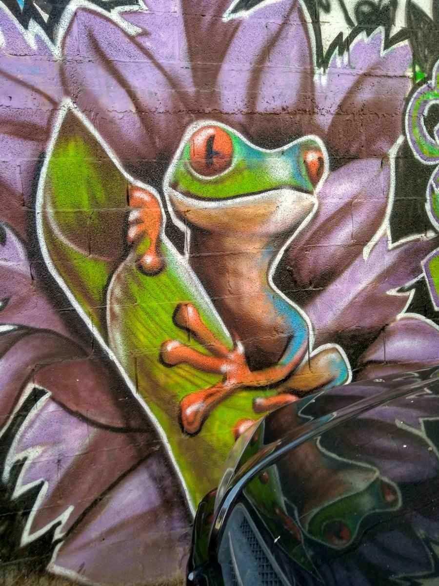 Israel - Tel Aviv Florenin neighborhood street art. Frog mural