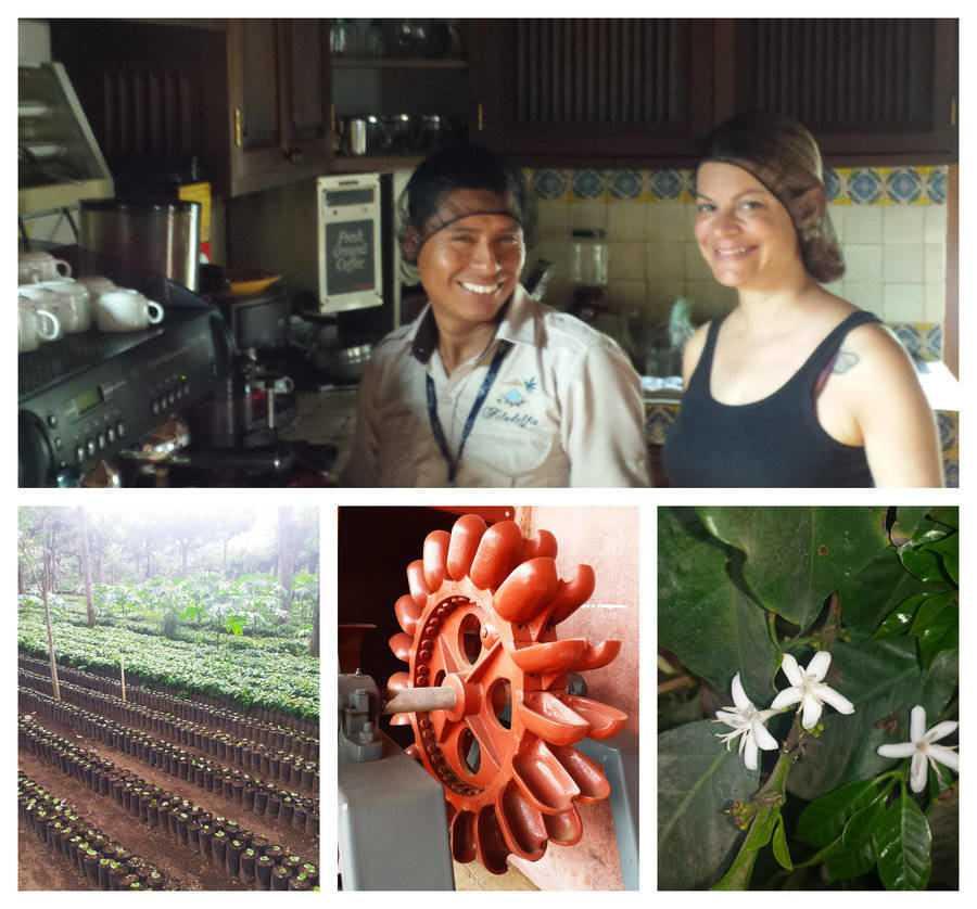 טיול קפה-דברים לעשות באנטיגואה גואטמלה