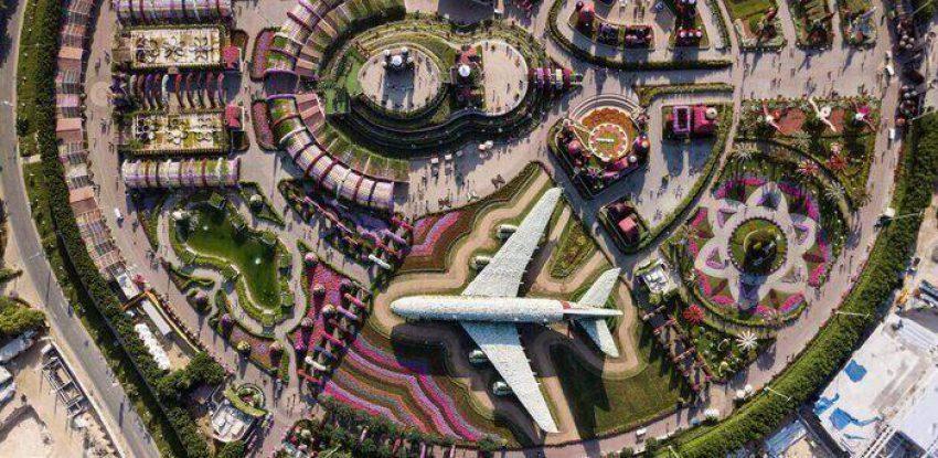Dubai Miracle Garden- מירקל גרדן בדובאי